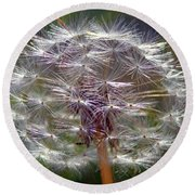 Round Beach Towel featuring the photograph Poof by Joseph Skompski