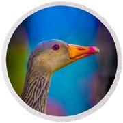 Portrait Of Greylag Goose, Iceland Round Beach Towel