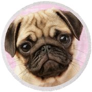 Pug Portrait Round Beach Towel