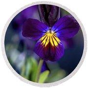 Purple Viola Round Beach Towel