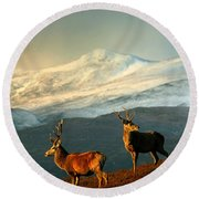 Red Deer Stags Round Beach Towel