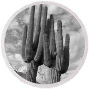 Saguaro Love Round Beach Towel