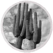 Saguaro Love Round Beach Towel