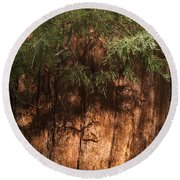 Sequoia Round Beach Towel by Muhie Kanawati
