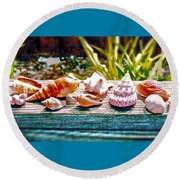 Round Beach Towel featuring the photograph Shell Collection by Annie Zeno