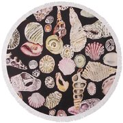 Shells By C . 1.3 Round Beach Towel