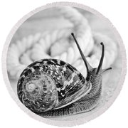 Snail Round Beach Towel