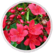 Lovely Spring Flowers Round Beach Towel