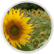 Sun Flower Fields Round Beach Towel