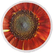 Sunflower Round Beach Towel by Kathy Bassett
