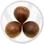 Round Beach Towel featuring the photograph Sweet Chestnuts Fruits by Fabrizio Troiani