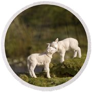 Sweet Little Lambs Round Beach Towel by Angel  Tarantella