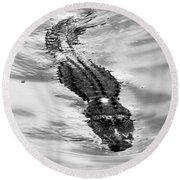 Swimming Gator Round Beach Towel
