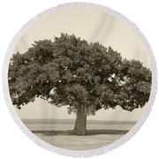 The Lonely Tree Round Beach Towel by Charles Beeler