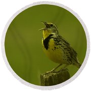 The Meadowlark Sings Round Beach Towel
