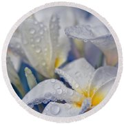 Round Beach Towel featuring the photograph The Wind Of Love by Sharon Mau