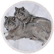 Timber Wolf Pair Round Beach Towel