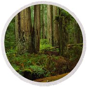 Trees In A Forest, Hoh Rainforest Round Beach Towel