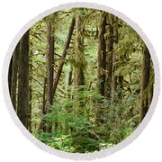 Trees In A Forest, Quinault Rainforest Round Beach Towel