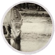 Two White Rhinos  Round Beach Towel