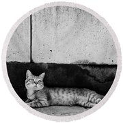 Round Beach Towel featuring the photograph Untitled by Laura Melis