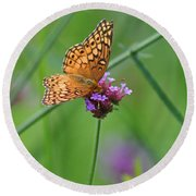Variegated Fritillary Butterfly In Field Round Beach Towel