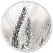 Wheat Round Beach Towel