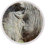 Wise One,elephant  Round Beach Towel