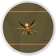 Yellow Jacket Wasp Round Beach Towel by Tom Janca