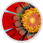Round Beach Towel featuring the photograph Zinnia In Red by Wendy Wilton