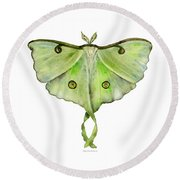 100 Luna Moth Round Beach Towel