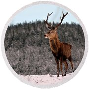 Red Deer Stag Round Beach Towel
