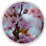 Plum Tree Flowers Round Beach Towel