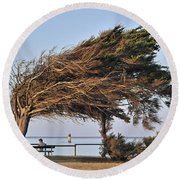 Round Beach Towel featuring the photograph 120920p152 by Arterra Picture Library