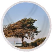 Round Beach Towel featuring the photograph 120920p153 by Arterra Picture Library
