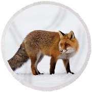 Round Beach Towel featuring the photograph 130201p054 by Arterra Picture Library