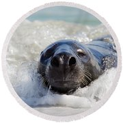 Round Beach Towel featuring the photograph 130201p142 by Arterra Picture Library