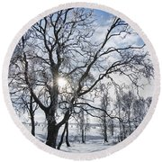 Round Beach Towel featuring the photograph 130201p341 by Arterra Picture Library