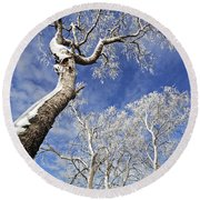 Round Beach Towel featuring the photograph 130201p343 by Arterra Picture Library