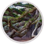 Angel Oak Tree Unique View Round Beach Towel