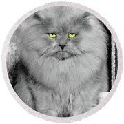 1940s Long Hair Blue Persian Cat Round Beach Towel