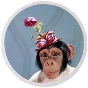 1960s Chimpanzee Wearing Dress Round Beach Towel