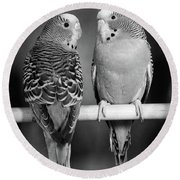 1960s Pair Of Parakeets Perched Round Beach Towel