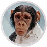 1970s Close-up Face Chimpanzee Looking Round Beach Towel