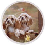 1970s Two Cocker Spaniel Puppies Round Beach Towel