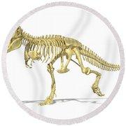 3d Rendering Of A Tyrannosaurus Rex Round Beach Towel