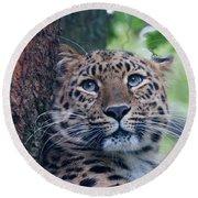 Amur Leopard Round Beach Towel