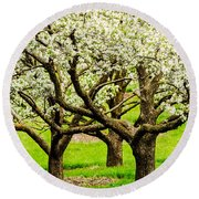 Apple Blossoms Round Beach Towel by Joe Mamer