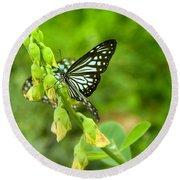 Blue Butterflies In The Green Garden Round Beach Towel