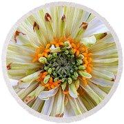 Chrysanthemum Fall In New Orleans Louisiana Round Beach Towel